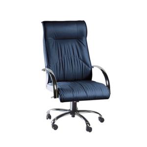 Cadeira - Diretor Fixa Casfer